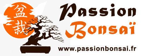 Passion Bonsaï