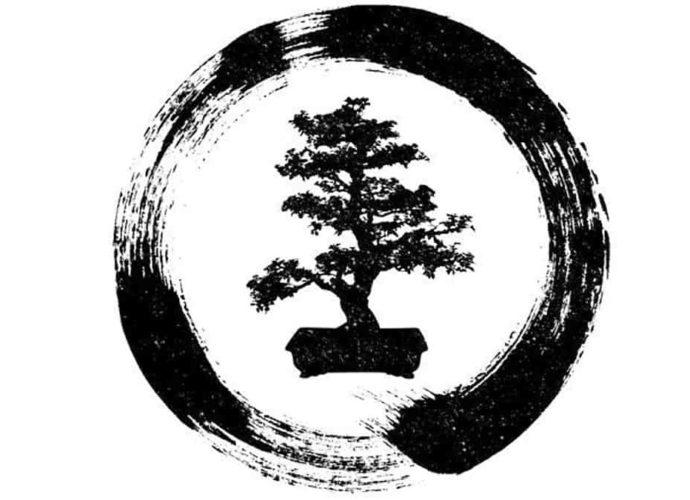 Que symbolisent les bonsaïs ?
