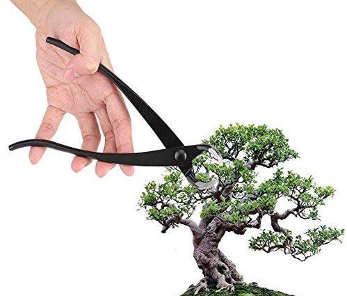 Bonsai Sécateur &Feuilles,Coupe-Bonsaï Coupe-branches 204mm Professionnel En Alliage de Zinc Bord de Jardin Branche Bonsaï Outils